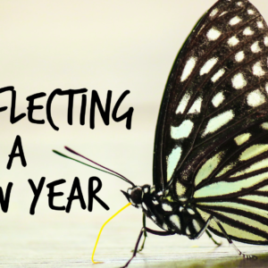 Reflecting on a New Year